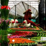 Explore The Top 5 Florists in Bangalore