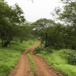 Visit 5 Lesser Known Places in Salalah