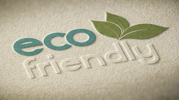 Printing on Eco-friendly Boxes as per Requirements is Cheap in the USA!